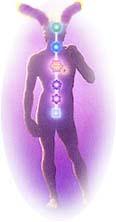 Биополе индикатора Целостности в человеческом организме